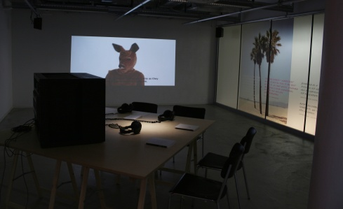 Red-Min(e)d_01_Installation-View_ZHdK-Zurich-2015_Suzanne-Lacy's-IDP-in-feminist-curatorial-thought